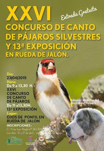En Rueda de Jalón se celebrará el 23 de abril de 2015 una expoción de pájaros silvestres de mastín del Pirineo